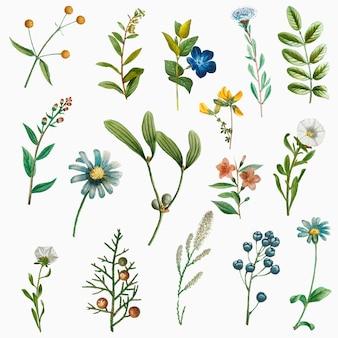 Ręcznie rysowane kwiat zestaw vintage ilustracji
