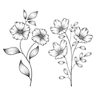 Ręcznie rysowane kwiatowy botaniczny dzikie kwiaty naszkicował pióro i atrament