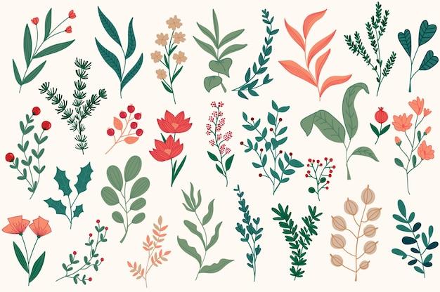 Ręcznie rysowane kwiatowy elementy dekoracyjne, liście, kwiaty, zioła i gałęzie botaniczne gryzmoły zestaw