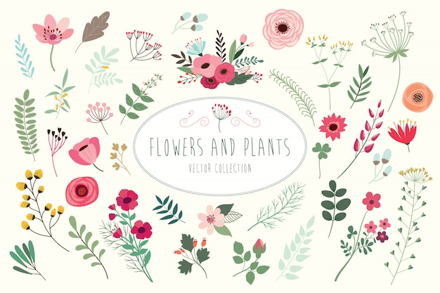 Ręcznie rysowane kwiatowy kolekcja z różnych kwiatów i liści.