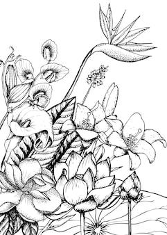 Ręcznie rysowane kwiatowy szablon naturalny