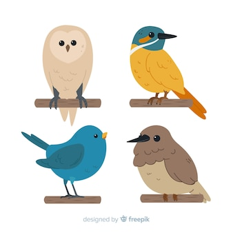 Ręcznie rysowane ładny zbiór ptaków