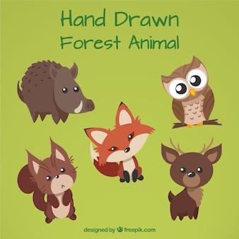 Ręcznie rysowane leśne zwierzęta z pięknymi oczami