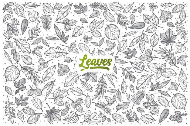 Ręcznie rysowane liści doodle zestaw tła z zielonym napisem