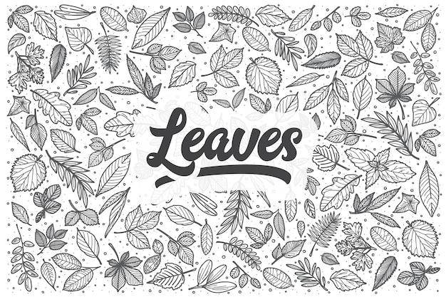 Ręcznie rysowane liście doodle zestaw. napis - liście