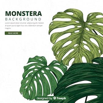 Ręcznie rysowane liście monstera