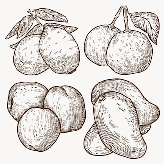 Ręcznie rysowane monochromatyczna kolekcja owoców