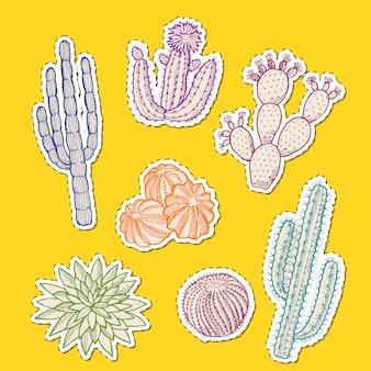 Ręcznie rysowane naklejki kaktusów pustyni zestaw ilustracji