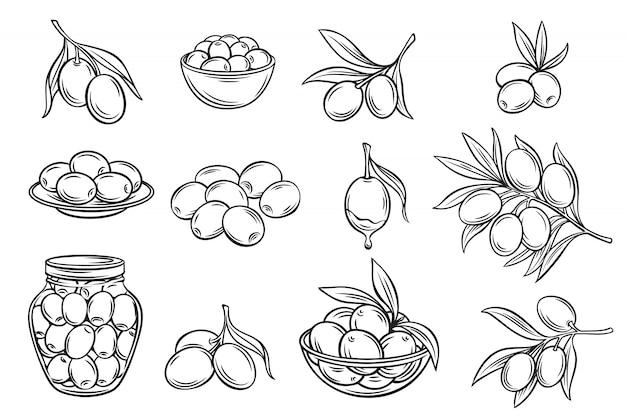 Ręcznie rysowane oliwki