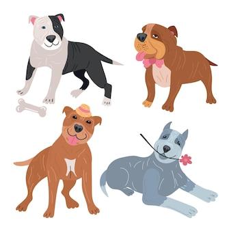 Ręcznie rysowane opakowanie pitbull