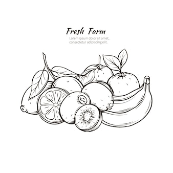 Ręcznie rysowane owoce zwrotnik.