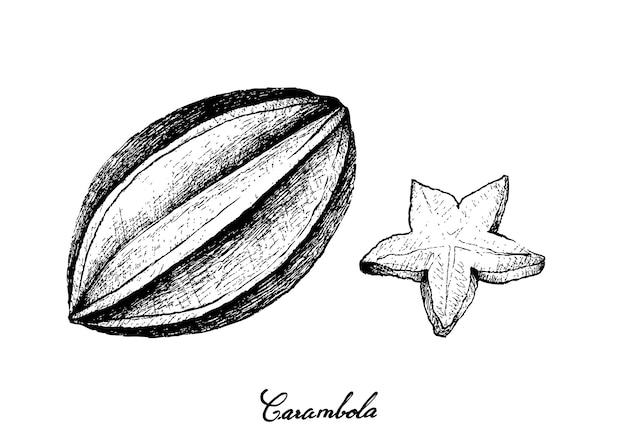 Ręcznie rysowane owoców carambola na białym tle