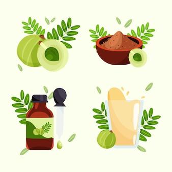Ręcznie rysowane pakiet elementów owoców amla