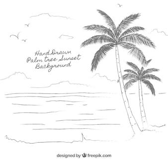Ręcznie rysowane palma drzewa tła