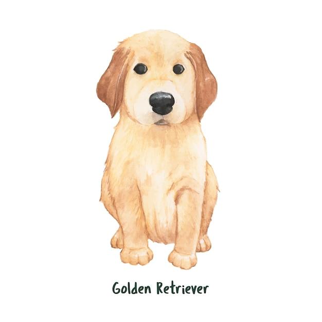 Ręcznie rysowane pies złoty retriever