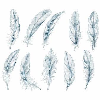 Ręcznie rysowane pióra na białym tle
