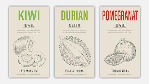 Ręcznie rysowane plakaty owoce kiwi, durian i granat. koncepcja zdrowej żywności w stylu vintage.