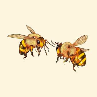 Ręcznie rysowane pszczoły na białym tle na żółtym tle