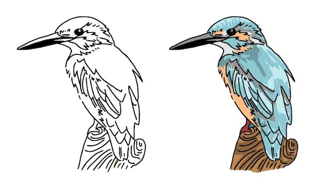 Ręcznie rysowane ptak kolorowanki dla dzieci