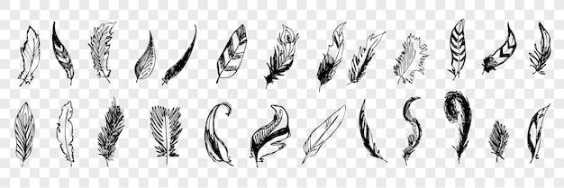 Ręcznie rysowane ptasie pióra doodle zestaw collecton. pióro lub ołówek, tusz do różnych ptasich piór. szkic różnych postaci pisania pióra na białym tle.