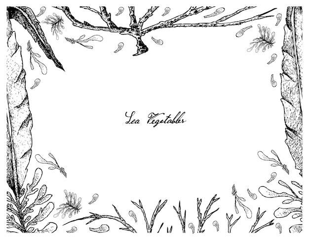 Ręcznie rysowane rama wodorostów ogonori i dabberlocks