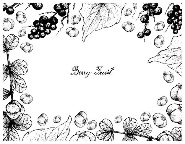 Ręcznie rysowane ramki canthium berberidifolium