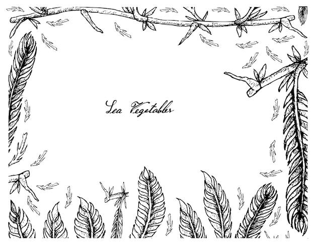 Ręcznie rysowane ramki caulerpa taxifoli wodorostów