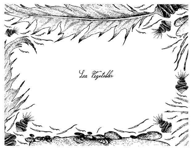 Ręcznie rysowane ramki wakame i aonori seaweed