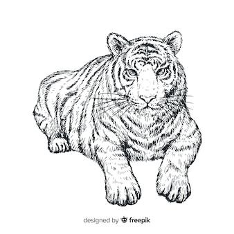 Ręcznie rysowane realistyczny tygrys