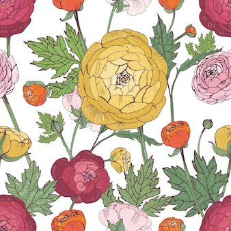 Ręcznie rysowane rocznika kwiatowy kolorowy wzór z ranunculus kwiat.