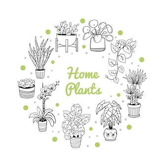 Ręcznie rysowane rośliny domowe i kwiaty
