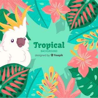 Ręcznie rysowane rośliny tropikalne i tło ptaka