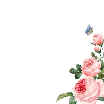 Ręcznie rysowane różowe róże ramki na białym tle