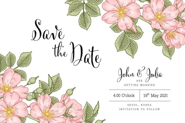 Ręcznie rysowane różowy dog rose (rosa canina) kwiat ilustracje vintage grafik na białym tle na białym tle.