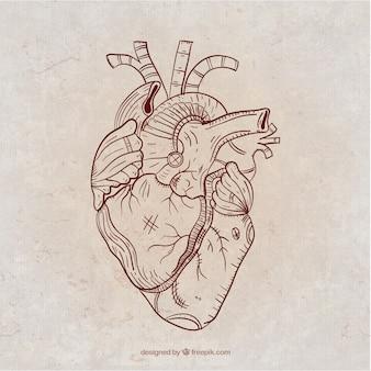 Ręcznie rysowane serce steampunk