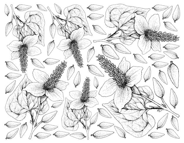 Ręcznie rysowane skecth tło roślin ogona jaszczurki