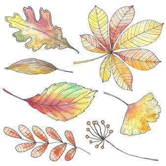 Ręcznie rysowane styl jesienne liście kolekcji