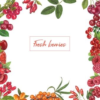 Ręcznie rysowane świeże jagody
