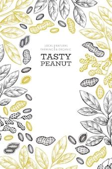 Ręcznie rysowane szablon gałęzi i jąder orzechowych. ilustracja żywności ekologicznej na białym tle. tło retro nakrętki. obraz botaniczny w stylu grawerowanym.