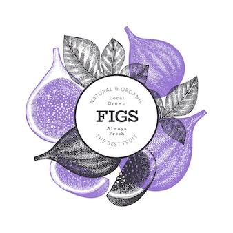 Ręcznie rysowane szablon owoce figi. ilustracja ekologicznej świeżej żywności. baner owoców retro fig.