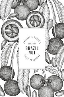 Ręcznie rysowane szablon projektu gałęzi i jąder orzechów brazylijskich