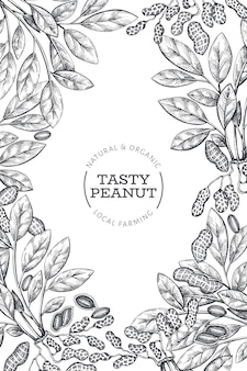 Ręcznie rysowane szablon projektu gałęzi i jąder orzechowych. ilustracja wektorowa żywności ekologicznej na białym tle.