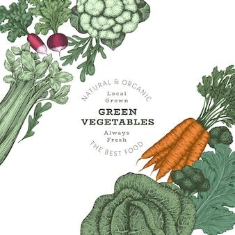 Ręcznie rysowane szablon rocznika warzyw