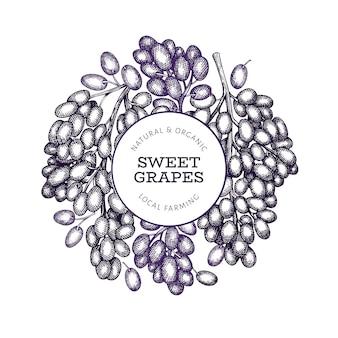 Ręcznie rysowane szablon transparent jagody winogron