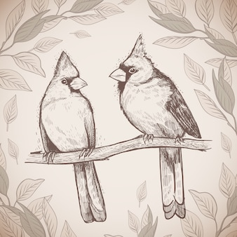Ręcznie rysowane szkic pary ptaków czerwonych kardynałów