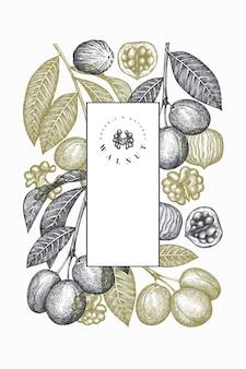 Ręcznie rysowane szkic projektu orzecha włoskiego