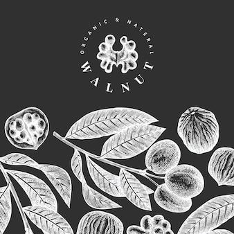 Ręcznie rysowane szkic szablonu projektu orzecha włoskiego.