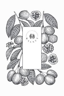 Ręcznie rysowane szkic szablonu projektu orzecha włoskiego
