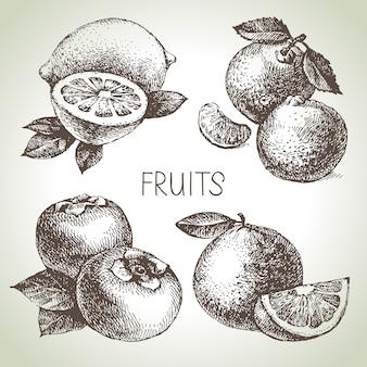 Ręcznie rysowane szkic zestaw owoców. żywność ekologiczna. ilustracja