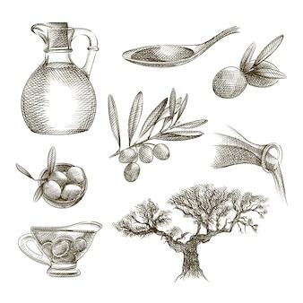 Ręcznie rysowane szkic zestawu oliwek. zestaw zawiera oliwę z oliwek w dzbanku, oliwę z oliwek na łyżce, drzewo oliwne, gałązkę oliwną, oliwki